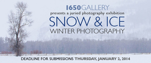 Snow & Ice 2014 Photography Exhibition