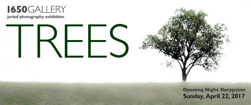 TREES Photography Exhibition