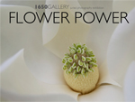 1650 Gallery Flower Power 2013 Photography Catalog