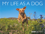 1650 Gallery My Life as a Dog 2014 Photography Catalog
