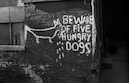 """Beware of Five Hungry Dogs"" by Thomas Moore"