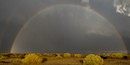 """Desert Rainbow"" by James Reeder"