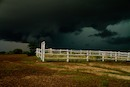 """Storm Over Graves"" by Leah Meyer"