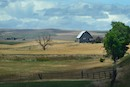 """Farm Country"" by Amy Kolzow"