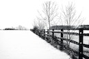 ">""Waterville Fence in Snow"" by Jerold Hale"