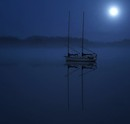 """Moonlight in The Cove"" by Dale Sumner"